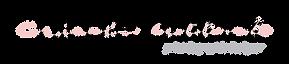logo_12.2020-01.png