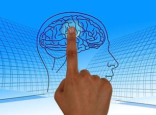santé-médical-cerveau-crane-main-doigt1.