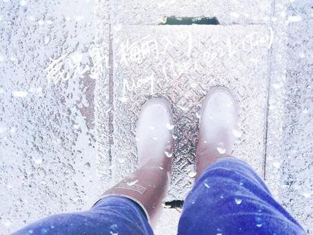 鹿児島、梅雨入り☔️