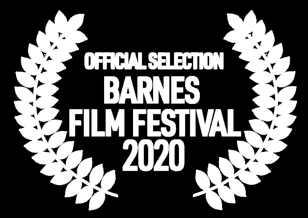Barnes Film Festival 2020