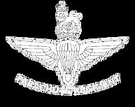 PARA logo.png