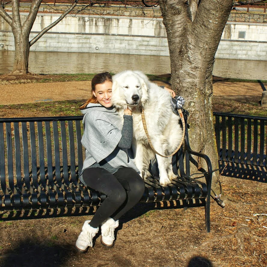 Photo with my great pyrenees Hadley sitting on a bench at Brown's Island in Richmond, VA.