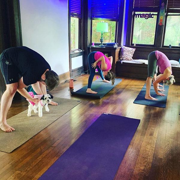 ty natalie tree yoga