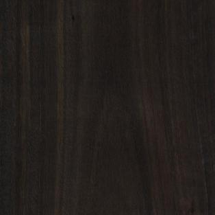 Smoked Eucalyptus - Crown Cut