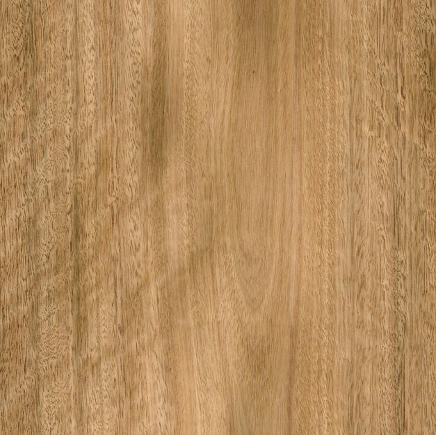 Spotted Gum - Crown Cut