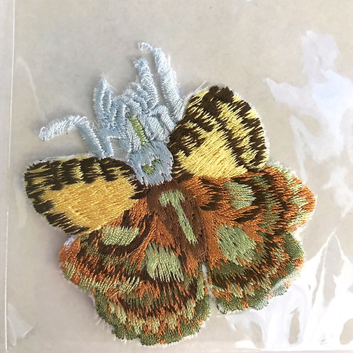 Chelicerata Butterfly by Keiko Nishiyama
