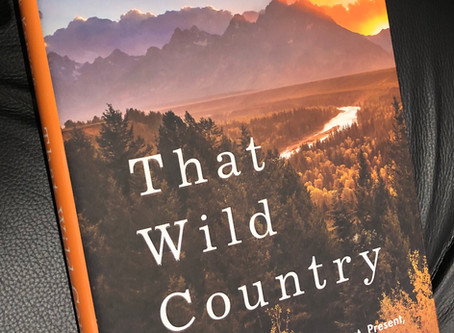 Book Review - That Wild Country by Mark Kenyon
