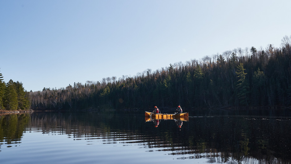 Planning a Whitetail Hunt in the Boundary Waters Canoe Area