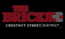 TheBricksCSD_Logo17-01.png