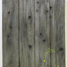 trace / wood #1