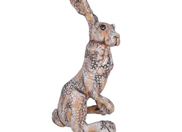 Medium Quirky Hare ref: mqh1