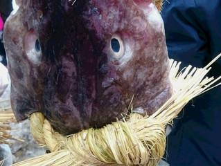 にかほ市掛魚まつり