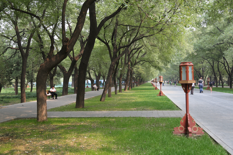 BeijingTemple.JPG