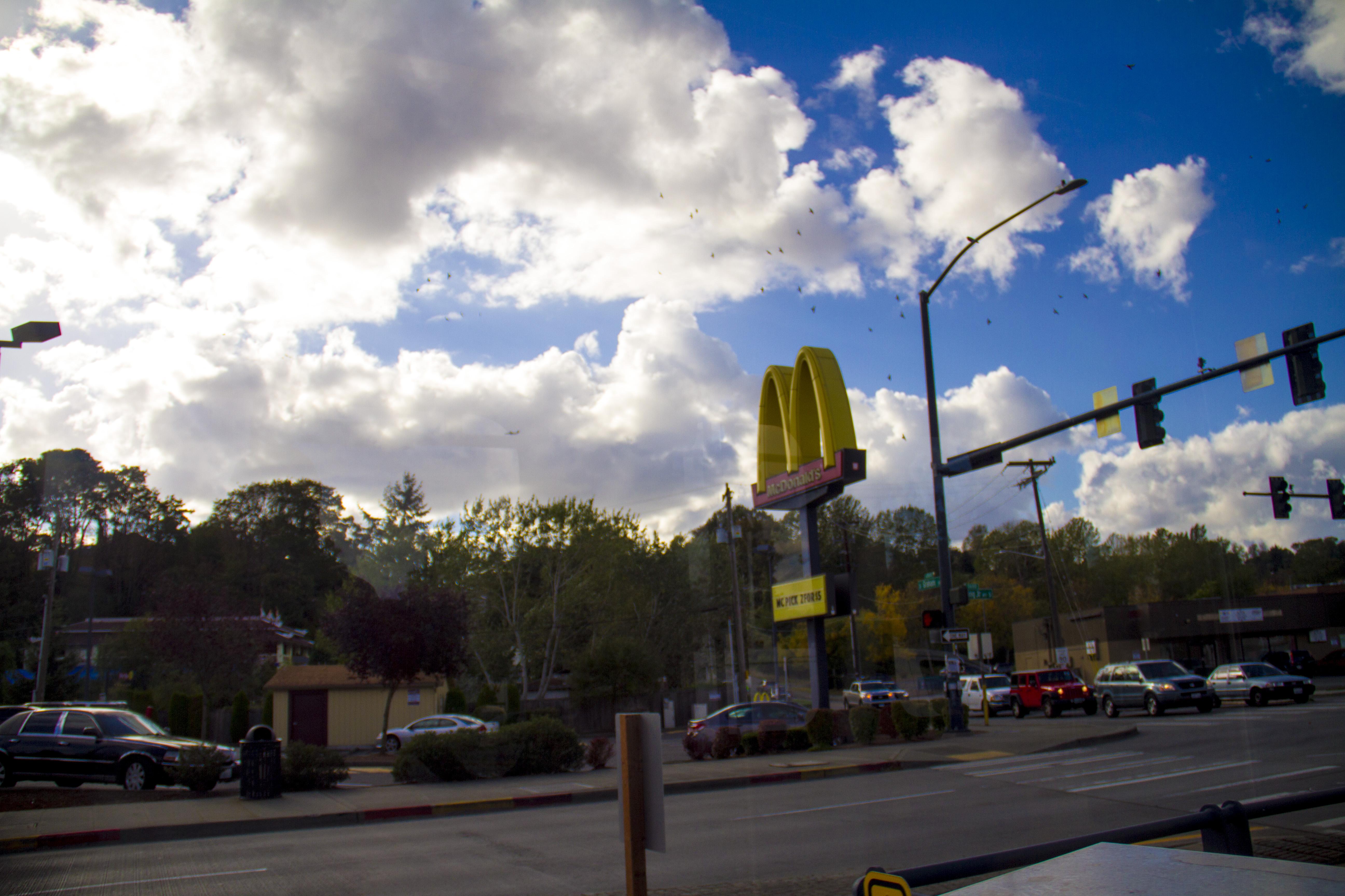 McDonalds Landscape