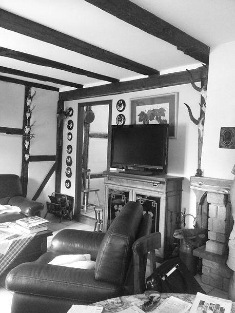 salon tele avant renovation