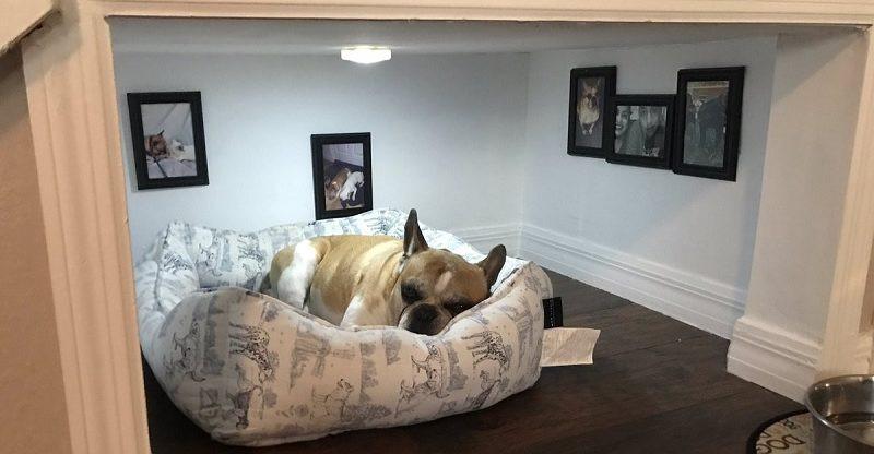 niche chien escalier très déco
