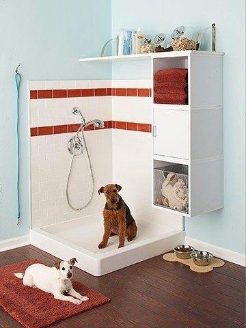 douche pour chien espace dog
