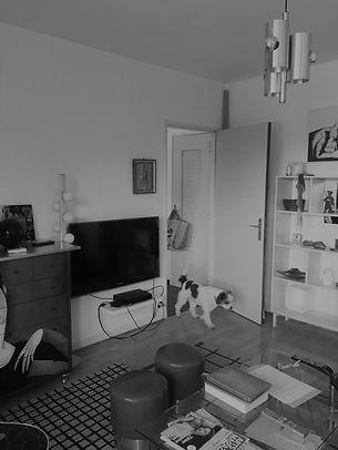 avant-renovation-bas-rhin-salon-tv-chien-java