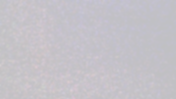 white noise (1).png
