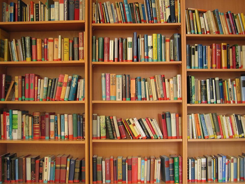 livros estante.jpg