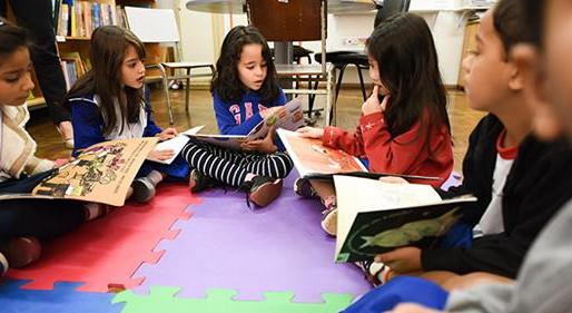 Pesquisas científicas comprovam que o hábito de ler promove o desenvolvimento do cérebro