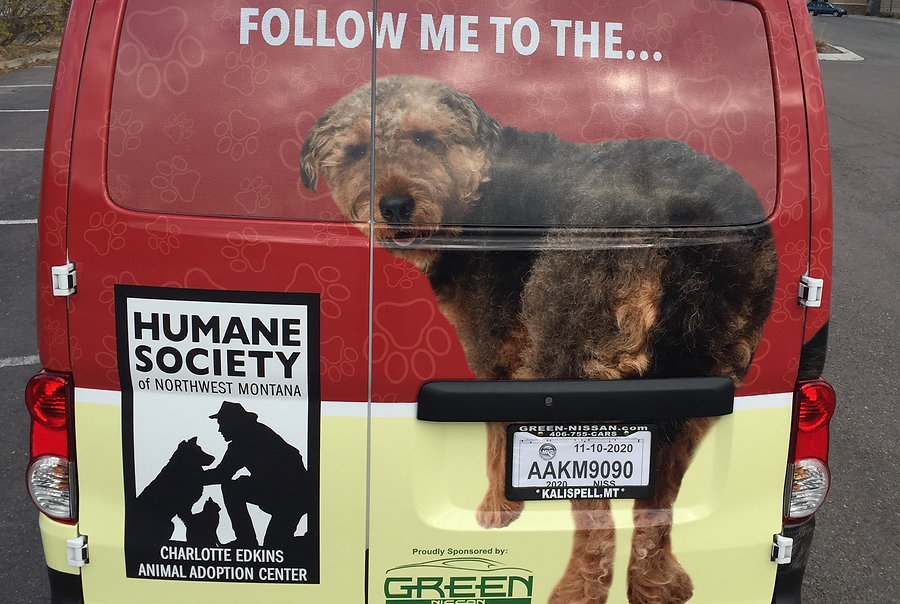 Full wrap by Wrap Hive for the Humane Society of NW MT