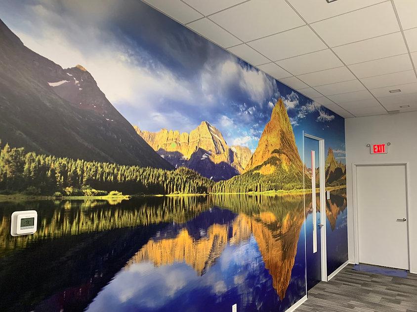 Glacier wall mural