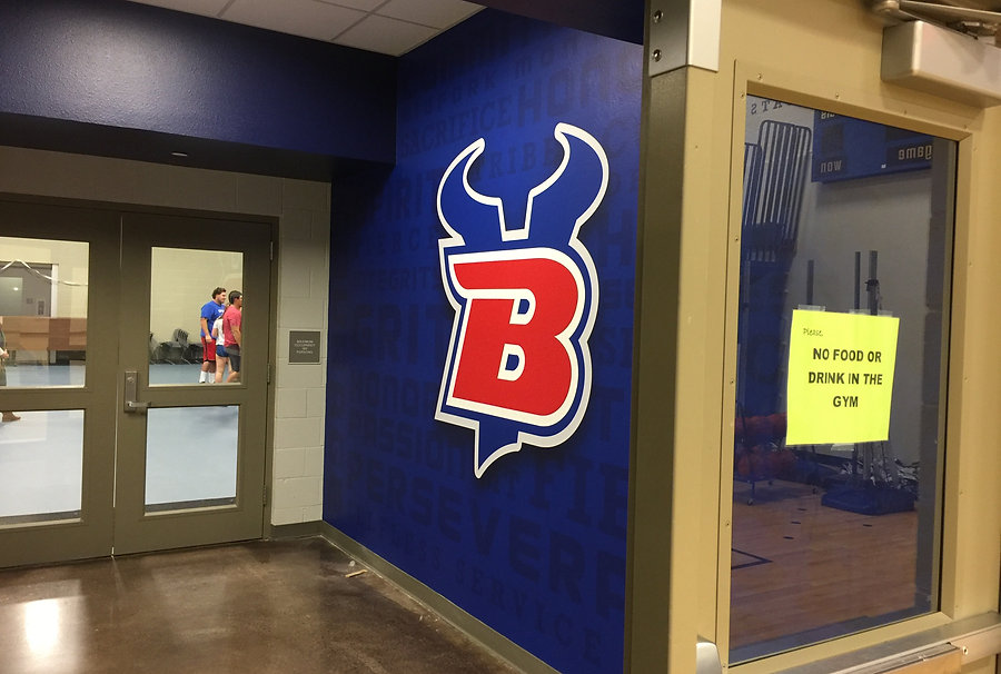 Bigfork school logo wall mural