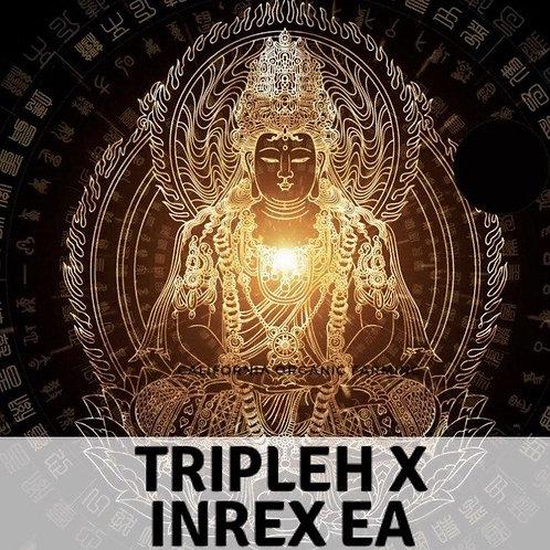 TripleH