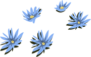 water-lily-575453_1280.png