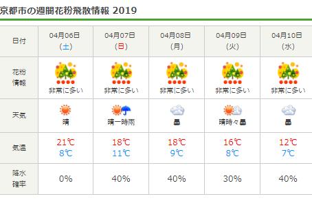 2019花粉シーズン後半戦