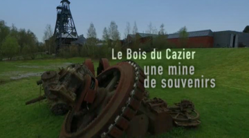 Bois du Cazier