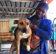 Introducing Cindy, Mdzananda's newest resident dog