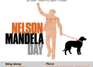 Build a kennel for a cold township pet this Mandela Day