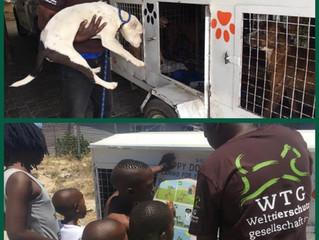 German organisation sponsors mobile clinics, animal ambulance and door-to-door education