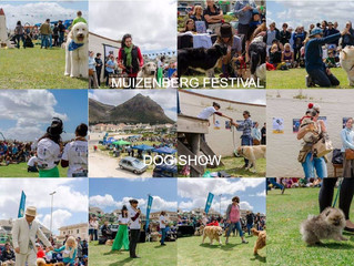 Muizenberg Festival Dog Show