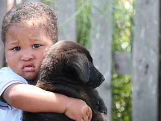 Be a part of the change! Change 12 000 township pets' lives in two months