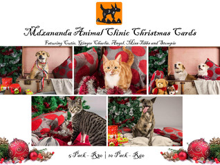 Christmas Cards out NOW !
