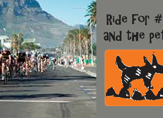 Ride the Cape Town Cycle Tourfor #TeamMdzananda
