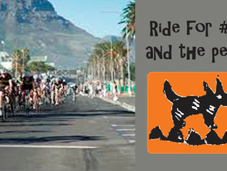 Ride the Cape Town Cycle Tour for #TeamMdzananda