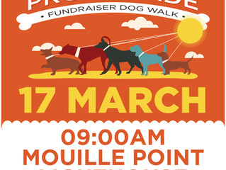 Paws on the Promenade - Dog Walk Fundraiser