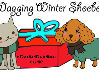Pack a Wagging Winter Shoebox for a pet in need