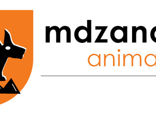 An upgraded look for Mdzananda