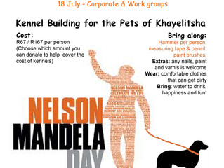 Mandela Day Kennel Building for the pets of Khayelitsha