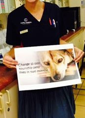 Dr Gemma Driscoll shares her story and talks about our 12 000 pets campaign