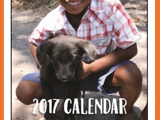 2017 Calendar Special!