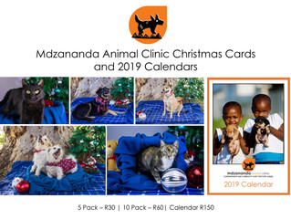 Christmas cards and 2019 calendar our NOW!