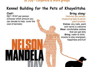 Mandela Day Kennel Building