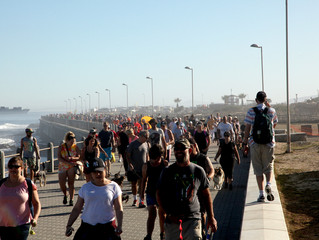 Furry friends and human companions fill the Sea Point promenade