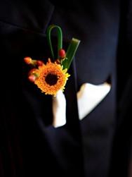 boutonniere, sunflower